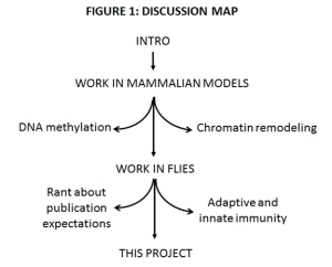DISCUSSION MAP